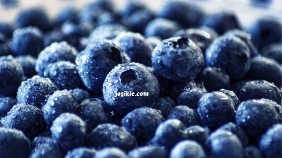 Manfaat Blueberry Untuk Kulit wajah